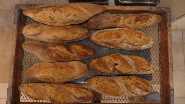 spot the futrell baguette